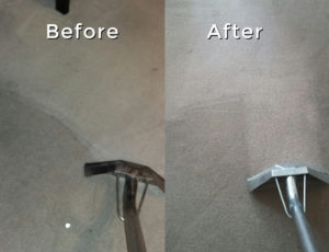 arpet Cleaning in London