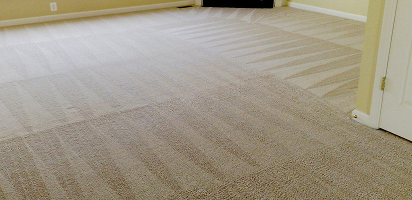 carpet-cleaning-putney