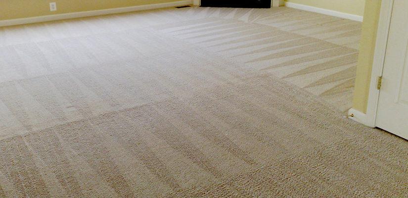 Carpet Cleaning Putney