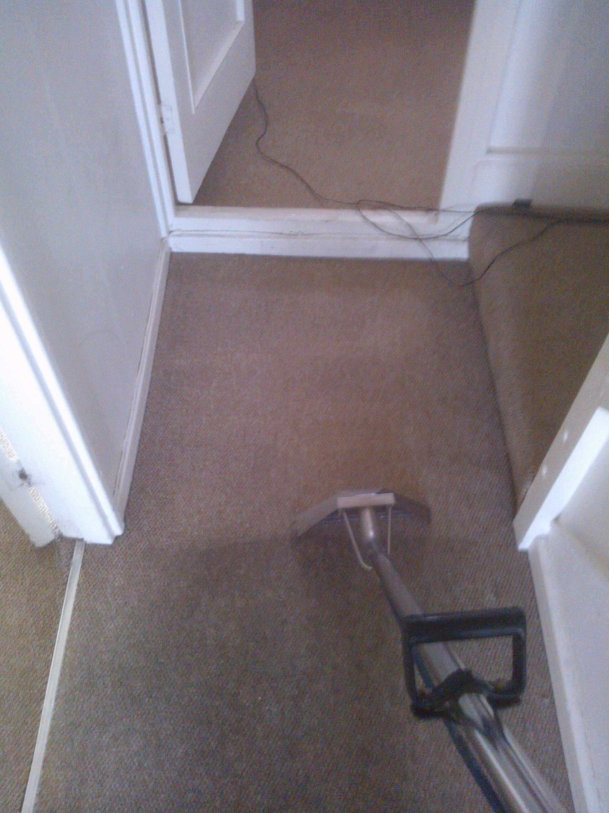 Carpet Cleaning Battersea Glory Clean